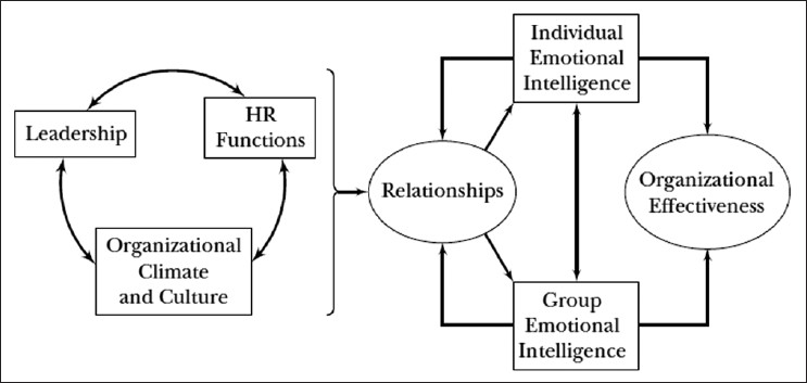 Figure 1: A model of emotional intelligence and organizational effectiveness. Figure adapted from Cherniss<sup>[11]</sup>