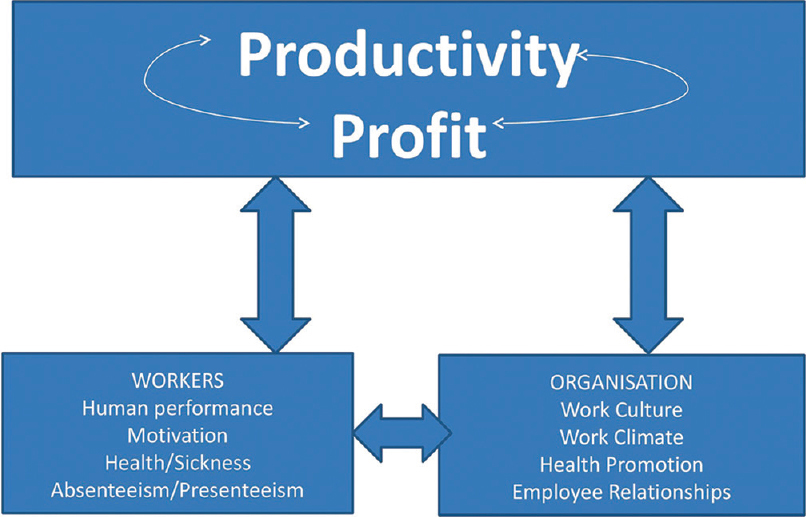 Figure 1: Cycle of productivity on which the study was based