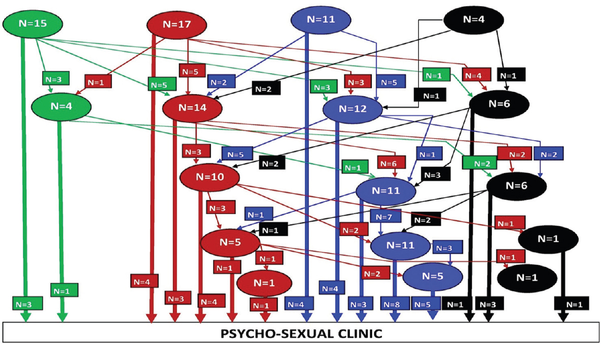 Figure 1: Pathways of care followed by patients before consulting specialized psychosexual clinic (Green: Help at home/relatives; Red: Indigenous practitioners; Blue: Allopathic doctors; Black: Traditional healer/drug stores)